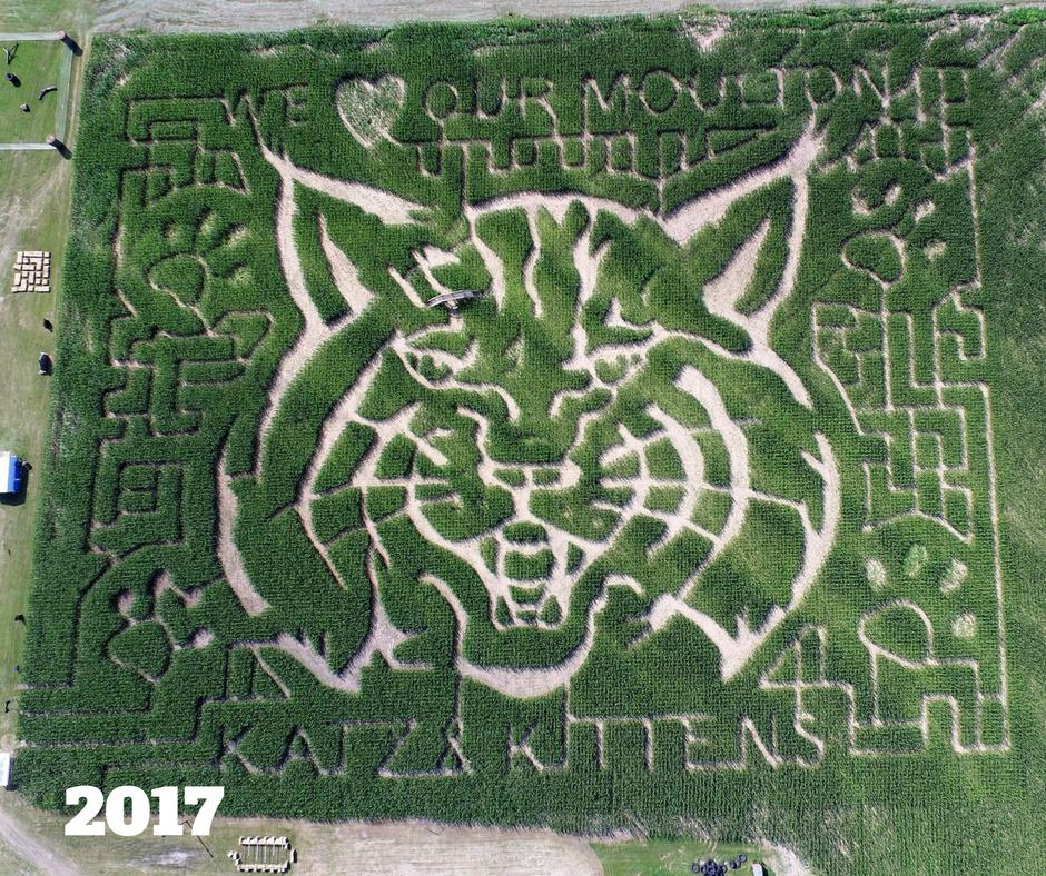 2017 Maze Design